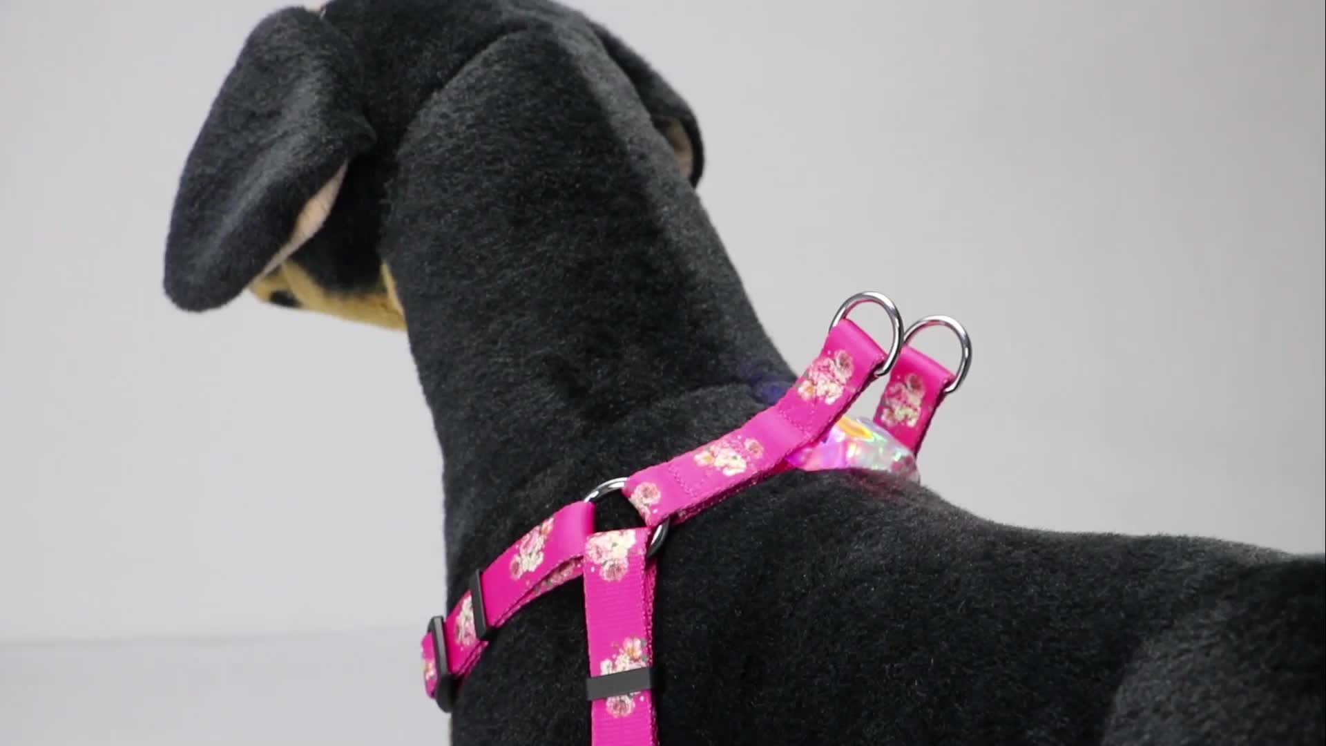 New Arrival Pet Training Products Light Up Led Flashing Dog Harness