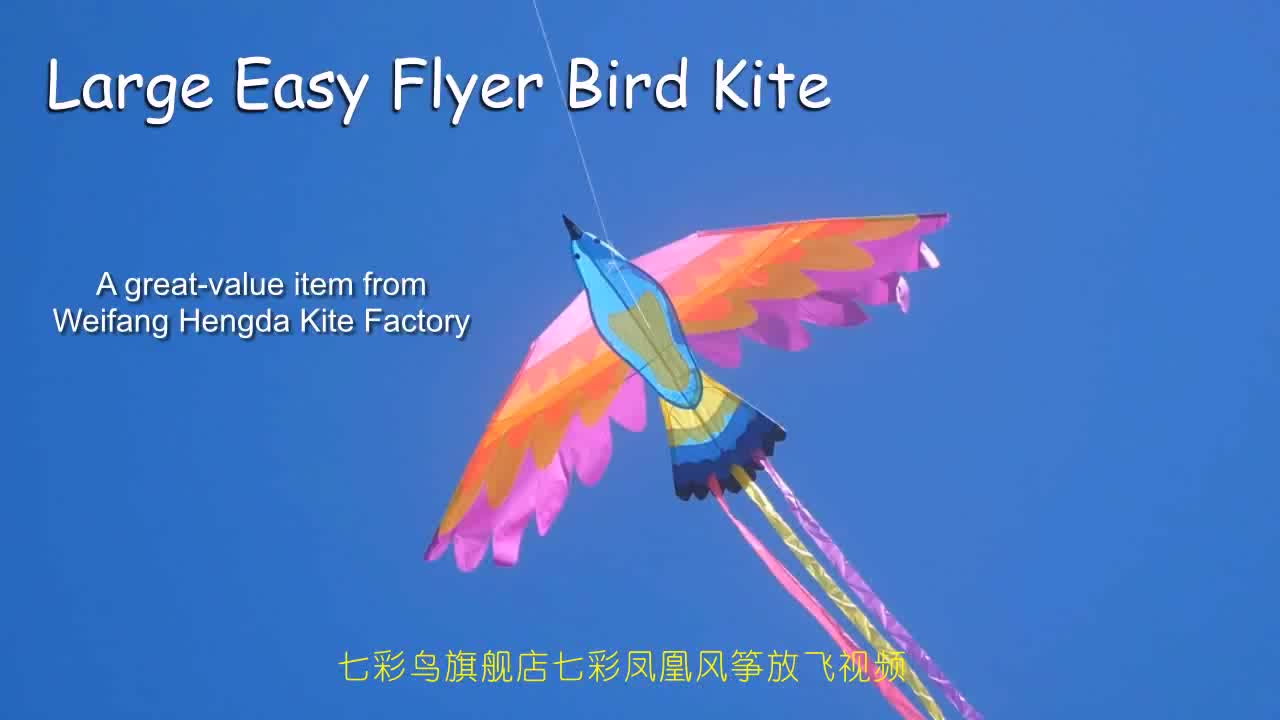 New arrival parrot kite for sale