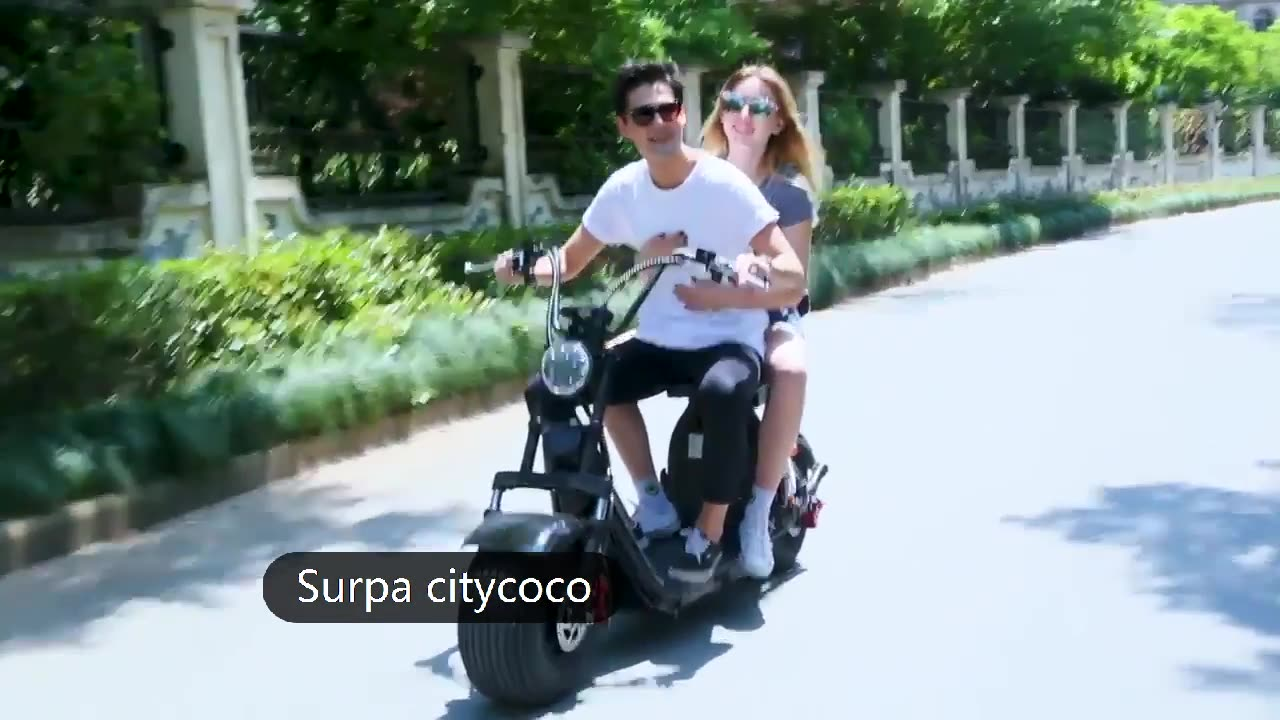 new model 2000w 1500w two removable 60v 12ah /20ah 2 seats fat tire citycoco  electric scooter chopper/china electric scooter