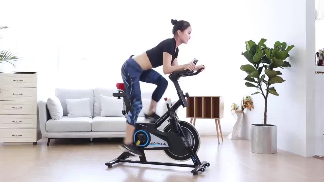 Indoor Cycling Spin Bike Home Use Fitness Spin Bike