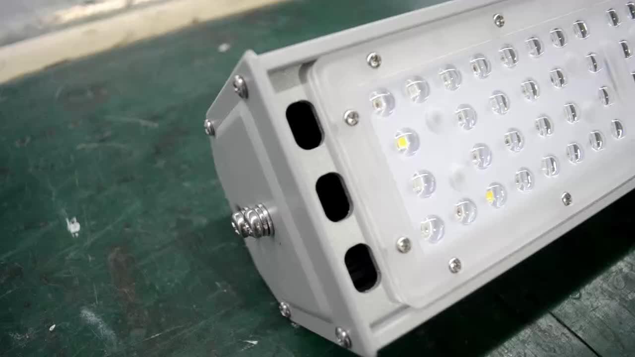 Customized full spectrum hydroponic greenhouse Indoor lighting 50W Hydroponic Full Spectrum for indoor plant