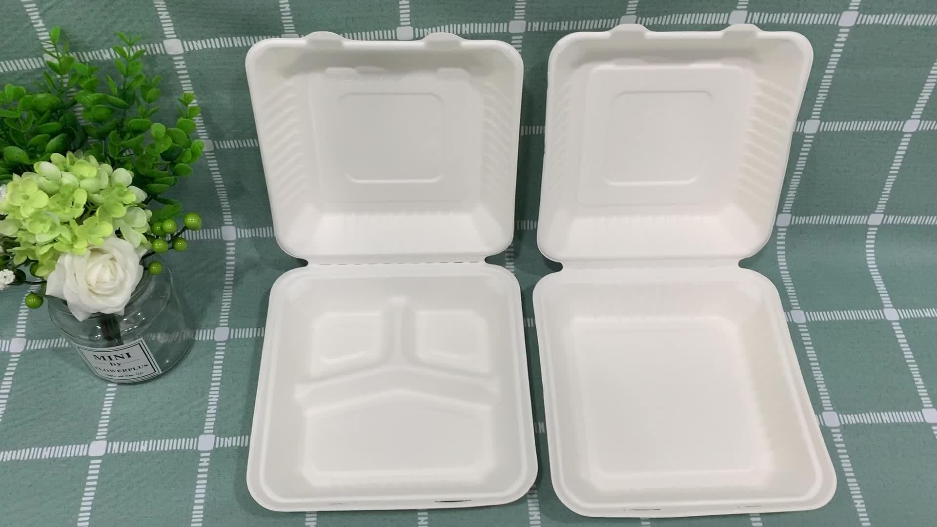 사탕수수 성형 펄프 단일 사용 사용 꺼내 식품 상자 성형 펄프 클램 쉘 상자