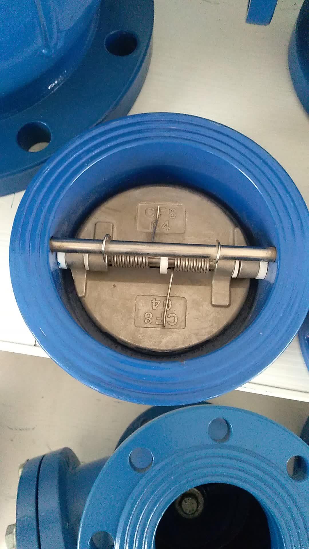 OEM DN50 Wasserölgas-Rückschlagventil