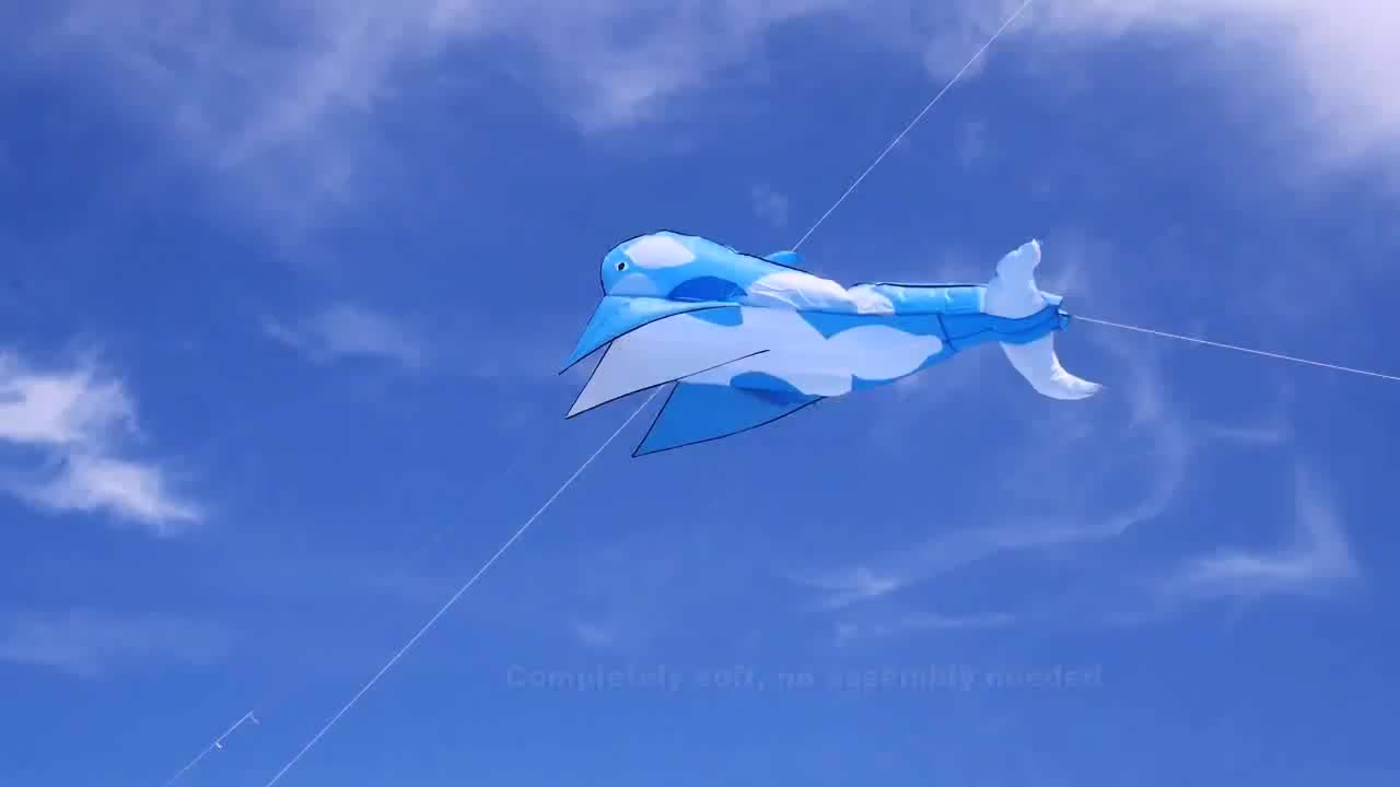 Hot Sale Whale Kite For Kids