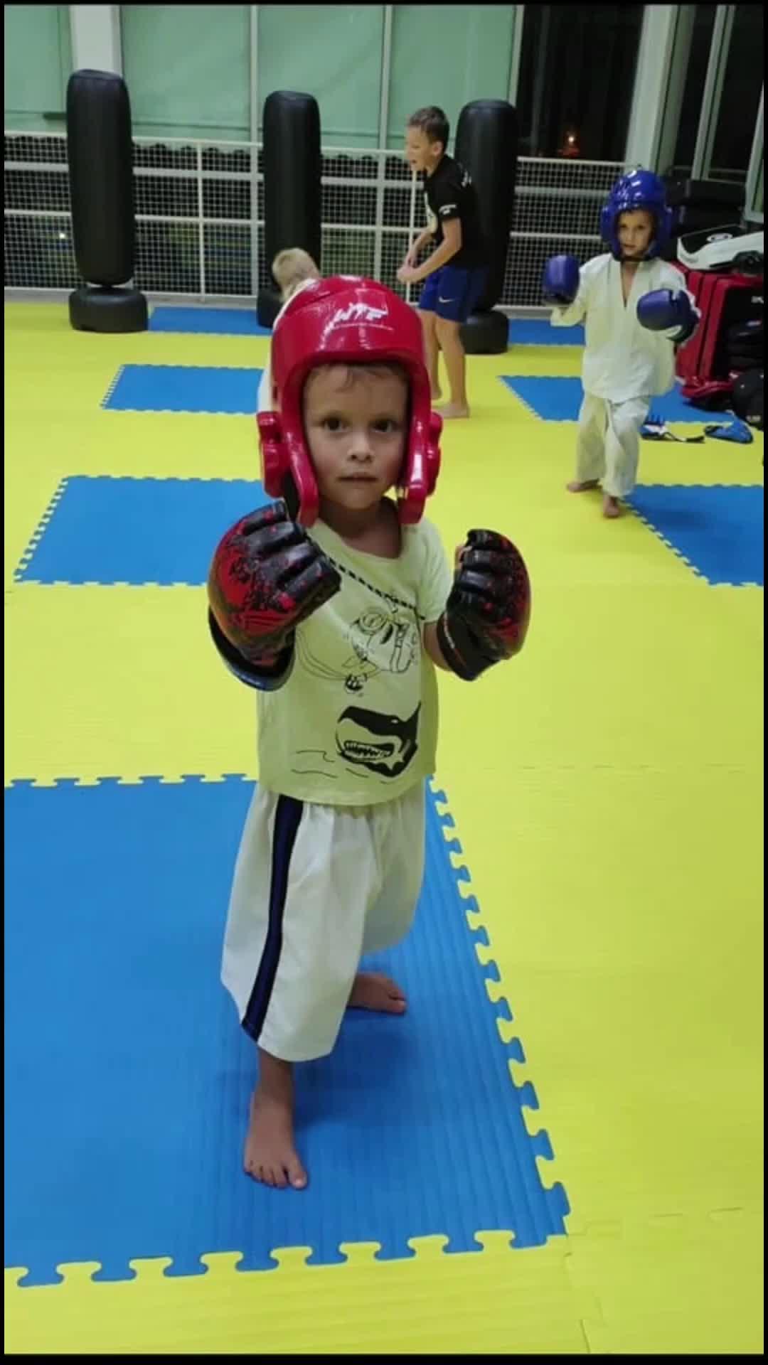 Hot Sale Haichi EVA Foam Training Karate Tatami Mats Taekwondo Puzzle Mat 3cm