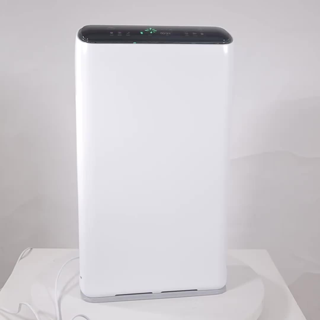 China Manufacturer OEM Portable Ionizer Air Cleaner Hepa Filter Anion Air Purifier Medical Air Purifier