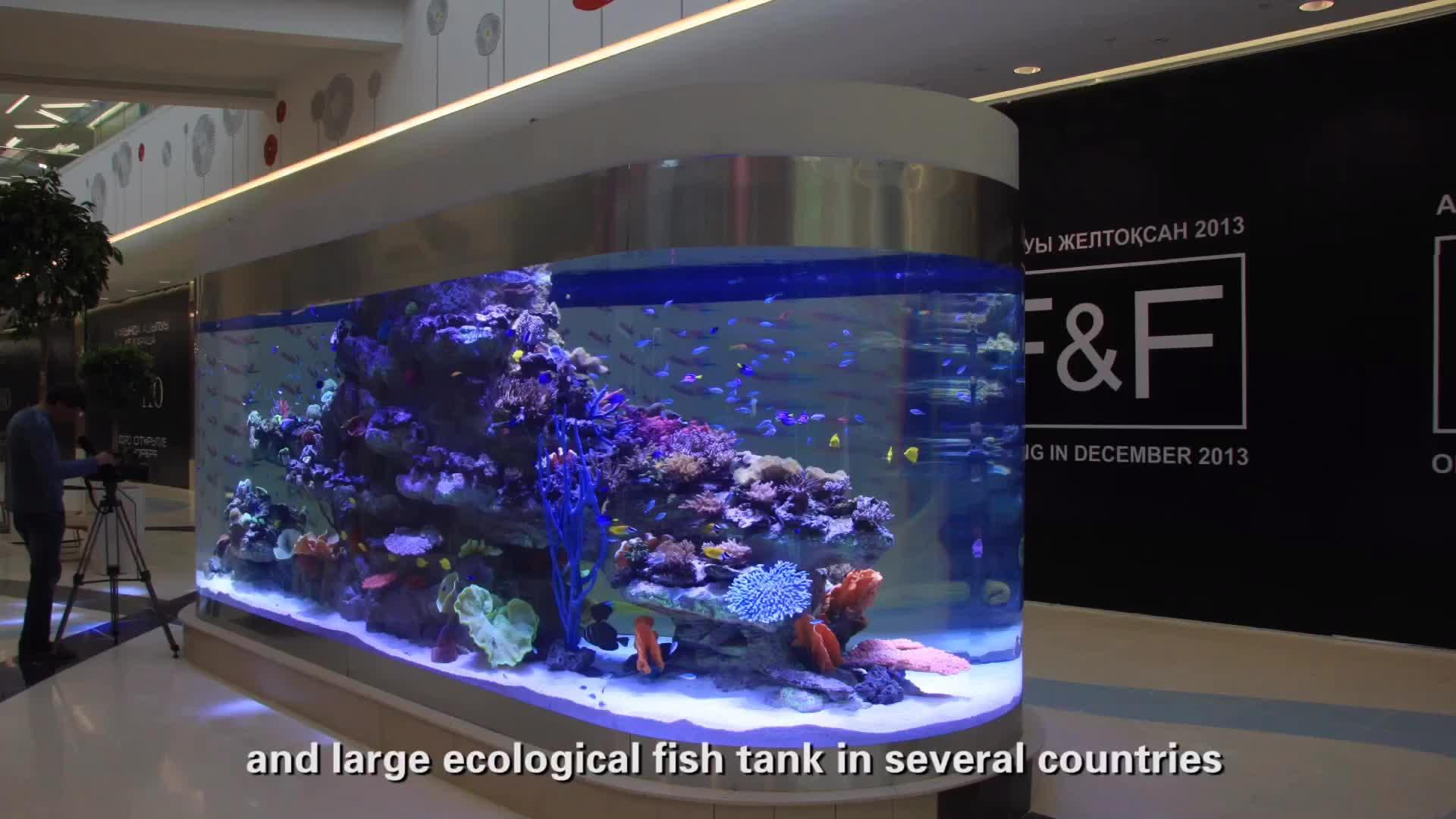 large plastic fish tank