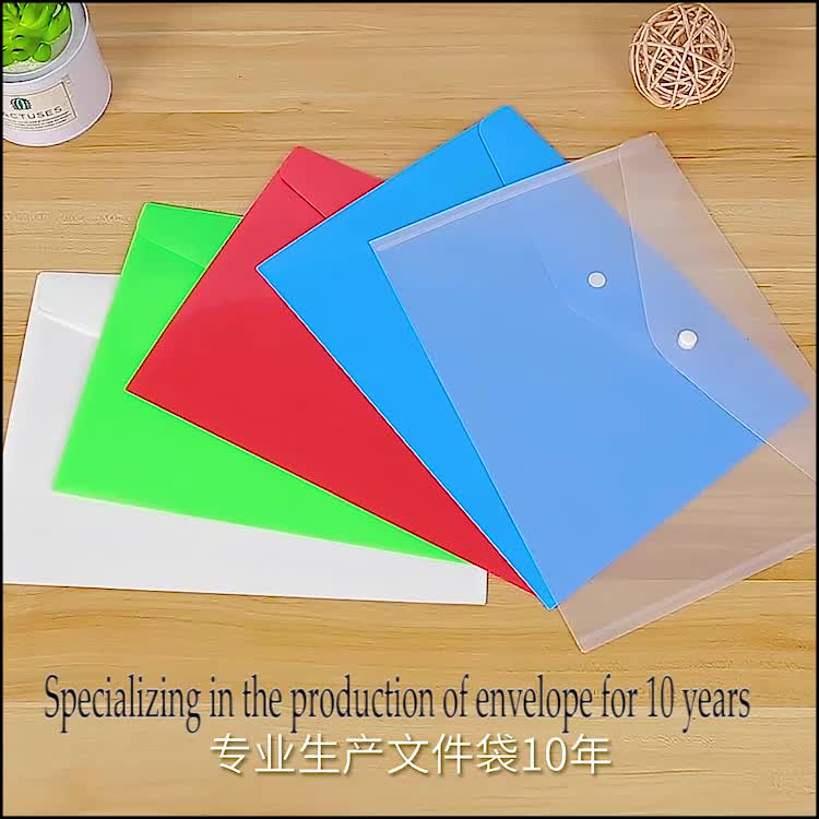 Custom Printed PP PVC Snap Button Folder Bag Acceptable High Quality Low Price Student Document Bag