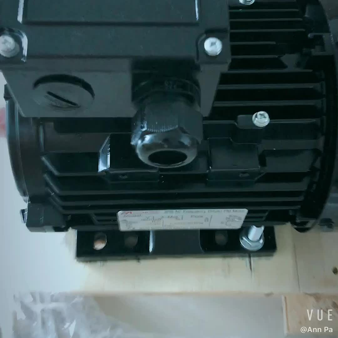 3KW 3000rpm IP55 AC230v IE4 permanent magnet synchronous pmsm motor 2kw
