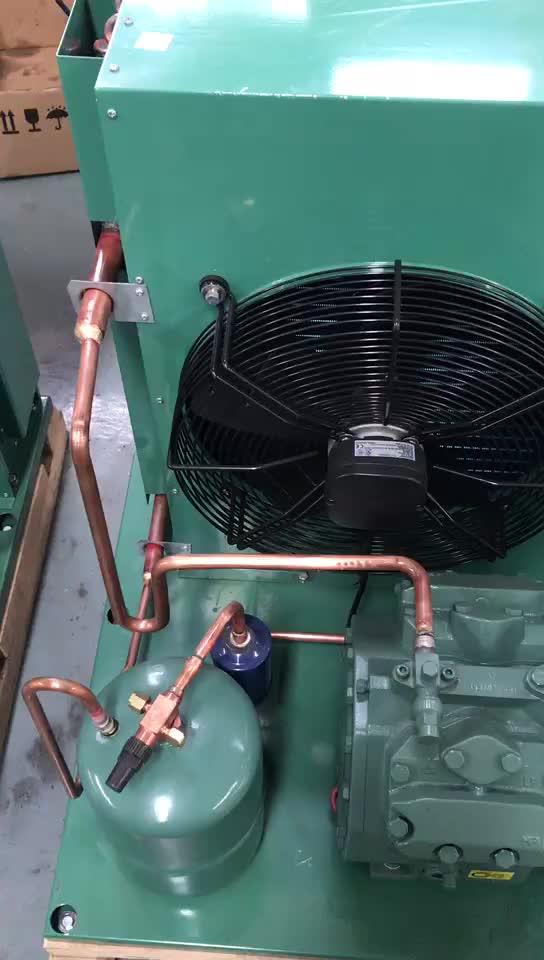 3HP Semi-hermetische Compressor Koeling Koeling Condenserende Eenheid voor Koude Kamer, Vriescel en Quick-bevriezing