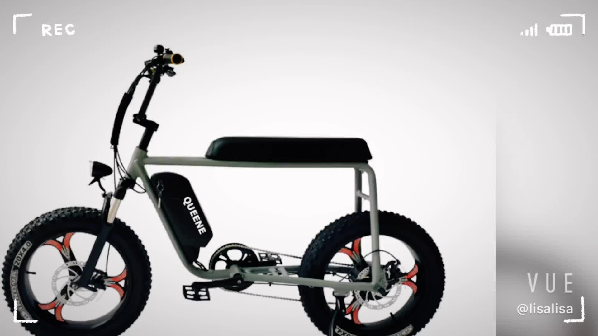 كويين/73 Ebike 750 واط/1000 واط ريترو المروحية الدهون الاطارات الكهربائية الدراجات دراجة كهربائية