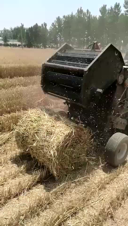 Agricoltura Macchina Mini Rotonda Fieno Rotopressa Per La Vendita