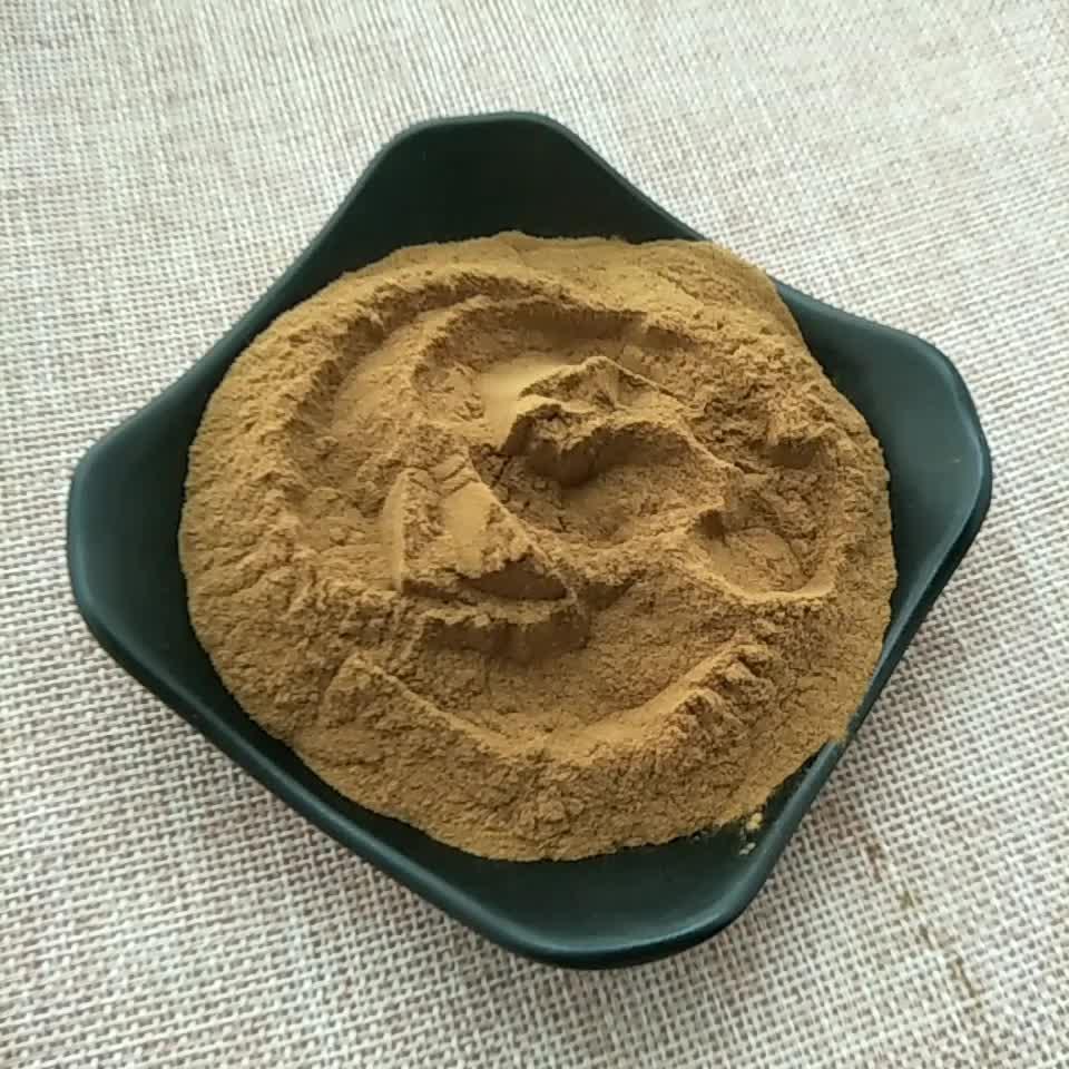 Ya ma zi Vendita Calda Prodotti Per La Cura della Salute naturale di semi di lino estratto di semi di lino lignani estratto in polvere