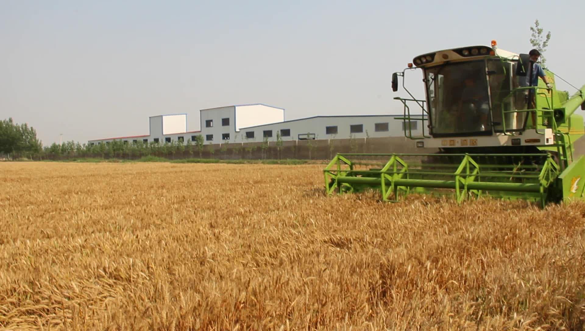 Grote tarwe/rijst maaidorser G60