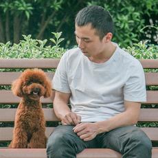 корм для собак Wang's father