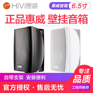 HIVI / WIWW VA6-OS wall mount speaker conference room set 4/5/8 calibration / fixed slap