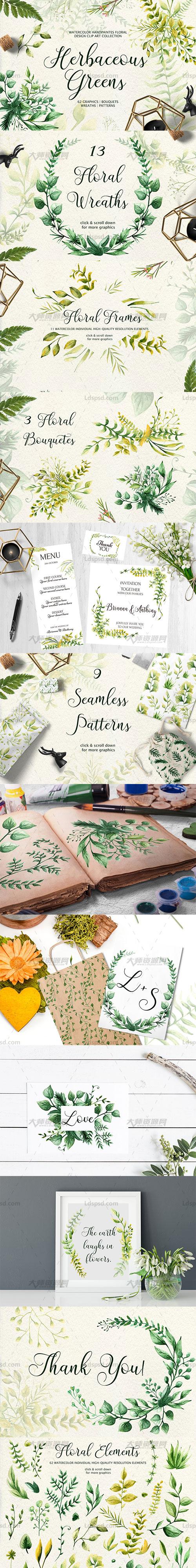 62张正规ag游戏技巧|HOME透明的北欧风水彩草本叶子PNG图片:Herbaceous Greens-watercolor set