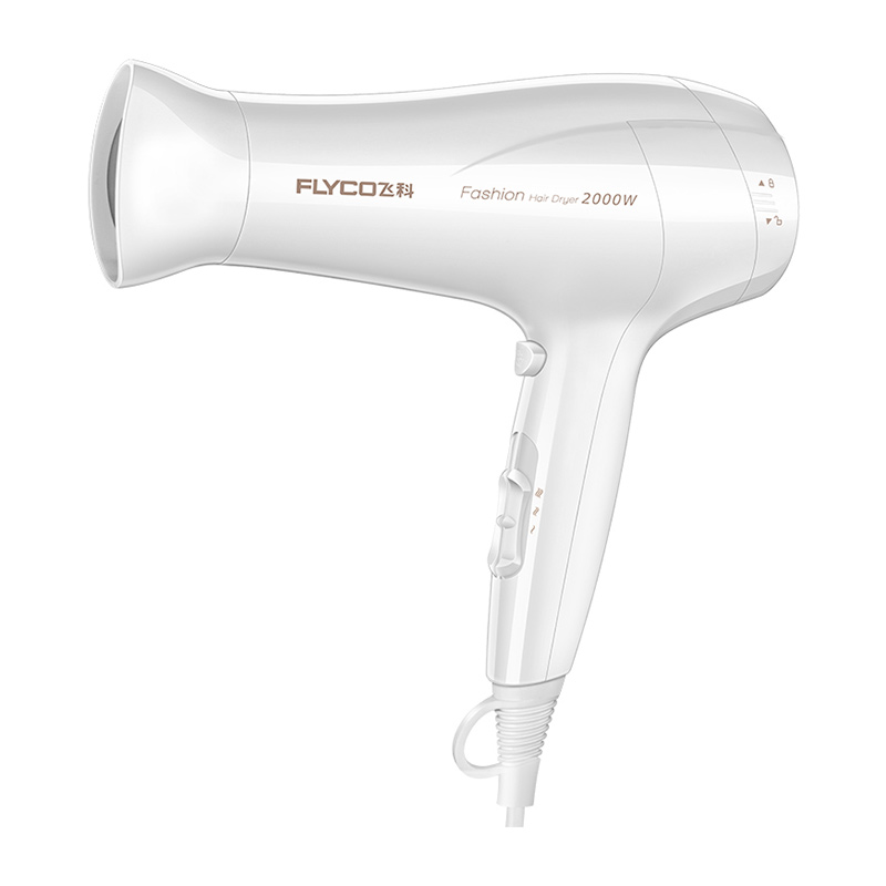 Flying Branch Hair Dryer Home Does Not Hurt Hair Foldable Portable