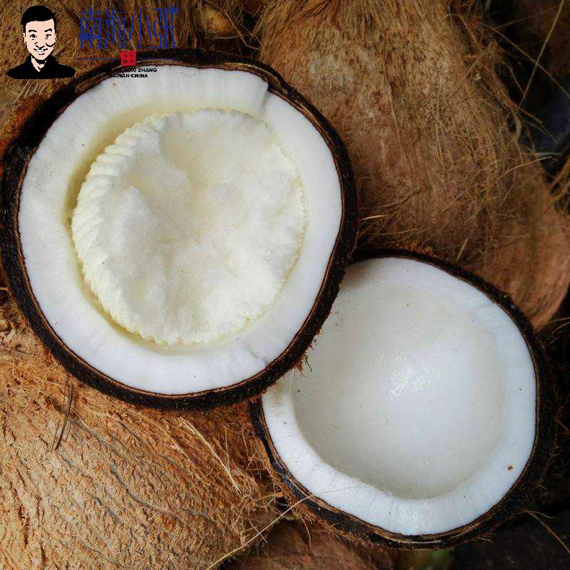个装顺丰包邮海南新鲜椰宝大果椰子芯发芽老椰子椰肉饼网红椰饼详细照片