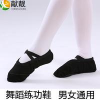 На мальчика / Женский детские черный танцевальная обувь Мягкая базовая ткань мужской Балетки, туфли, боди мужской Кошачий коготь