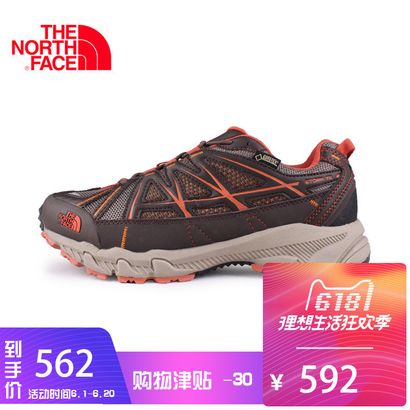 The North Face North Men's Shoes GTX