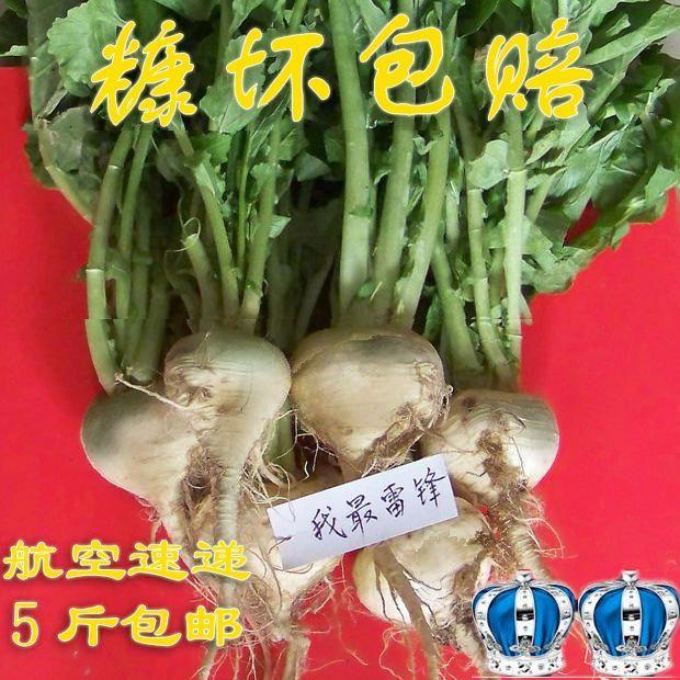 新疆柯坪 恰玛古新鲜 强碱性食物食品500克 航空 5斤包邮