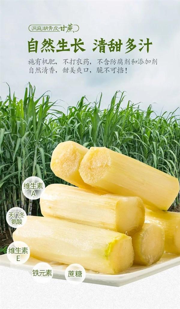 甘蔗新鲜现砍绿皮中段应季孕妇清甜多汁