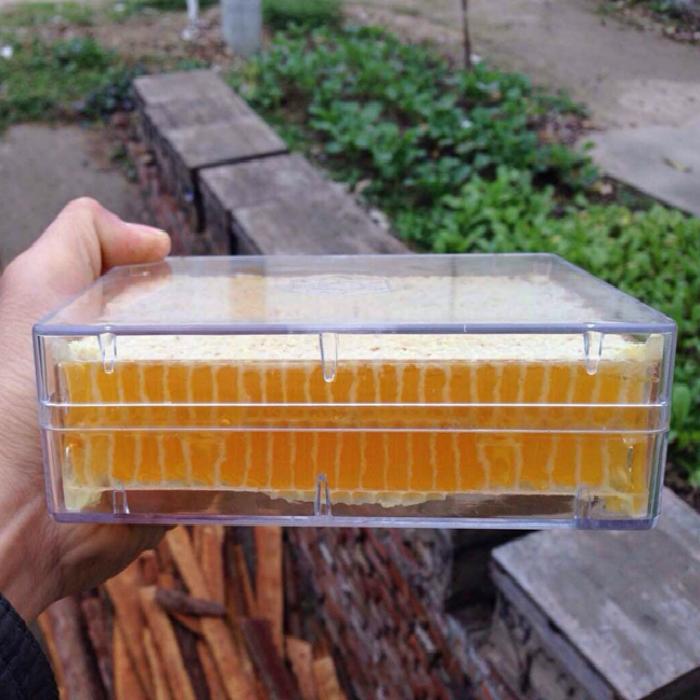 珠花牌洋槐花蜂蜜500g*2瓶 纯净天然 农家自产野生土蜜 槐花蜂蜜