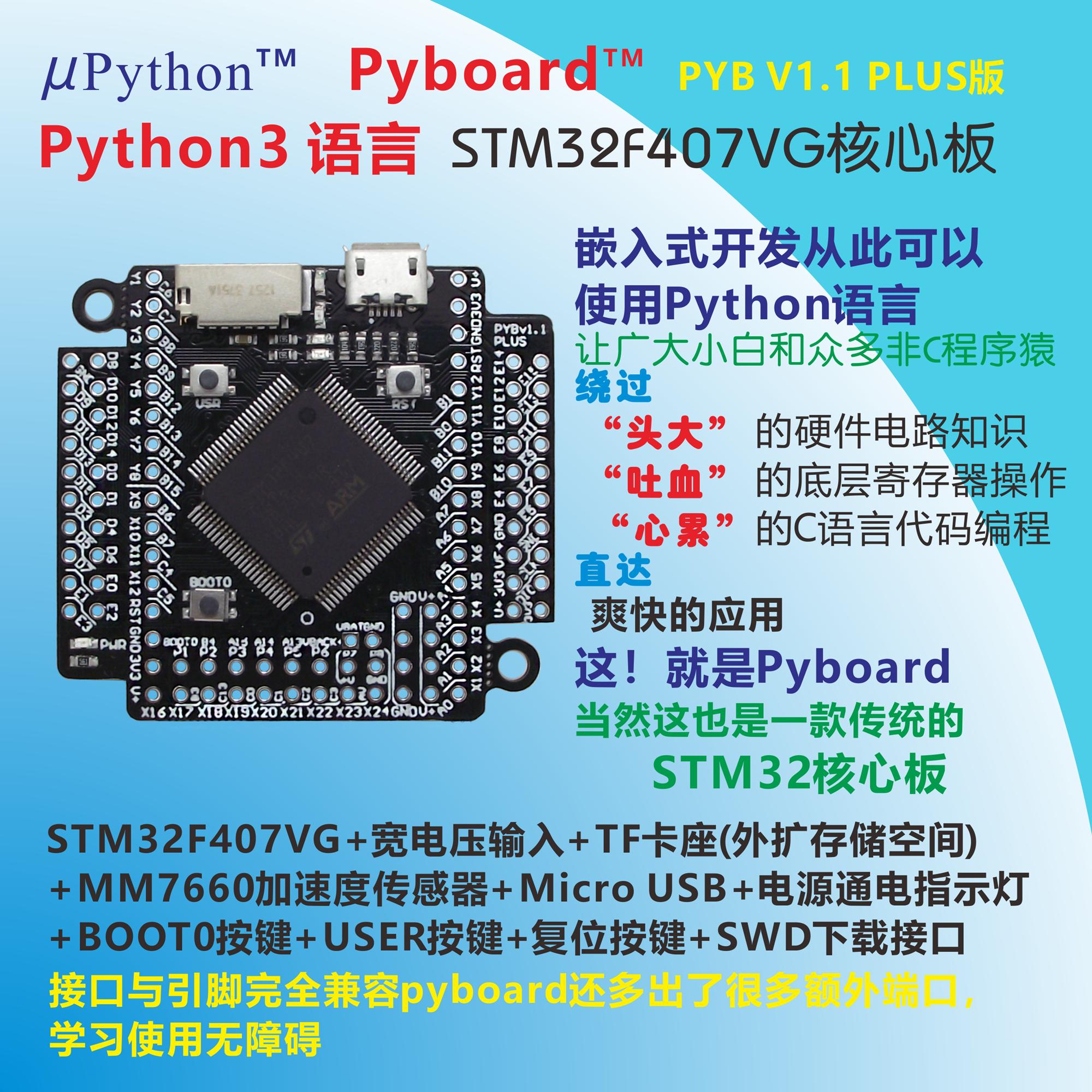 PYBv1.0 pinout