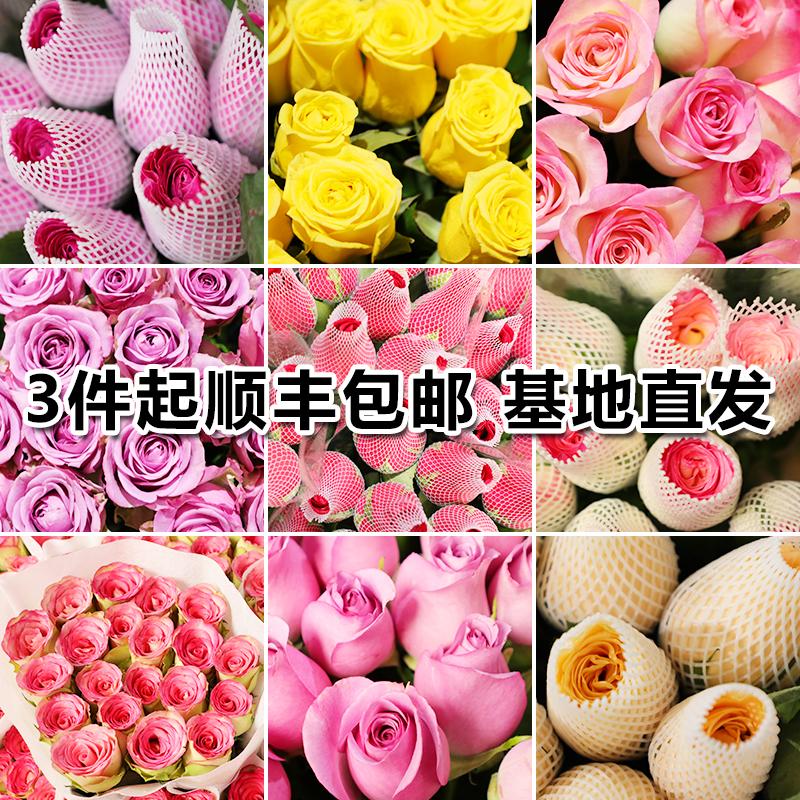 B级鲜花云南昆明基地直发玫瑰花鲜花包邮直批一扎20支家用直供