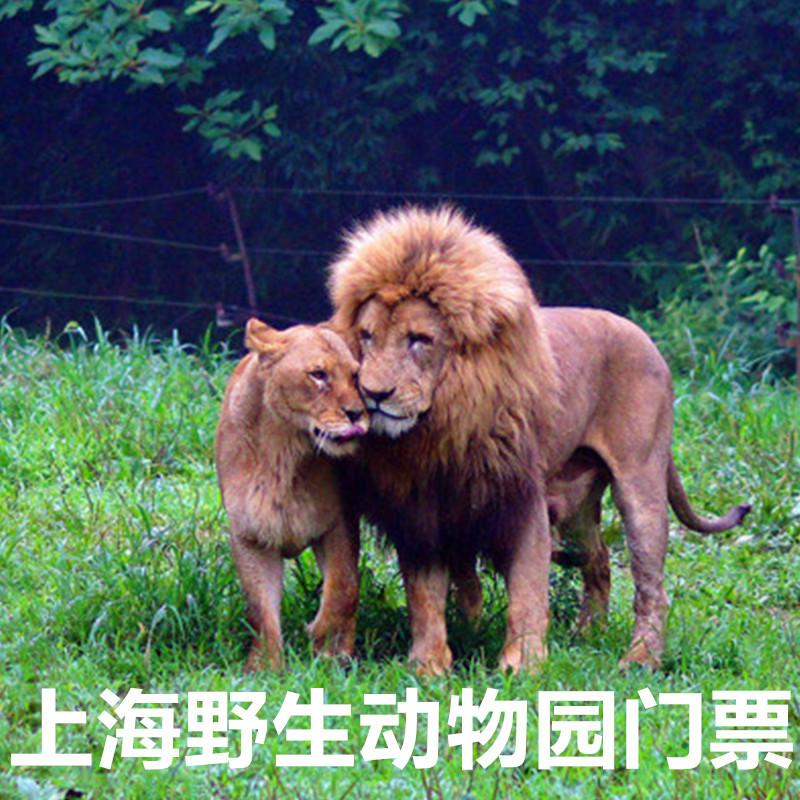 [上海野生动物园-大门票]上海野生动物园门票动物世界门票