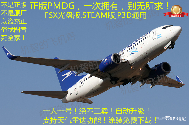 Aircraft brother pmdg genuine plug-in 737NGX Microsoft simulation flight  FSX immersive 737 P3D support steam