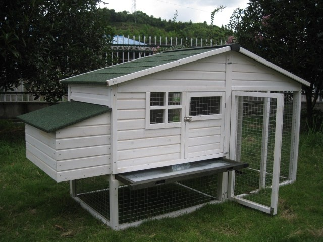 ... 鸽舍 鸽子屋 小狗窝 室外鸡笼 兔窝 大型鸽屋 鸽子房