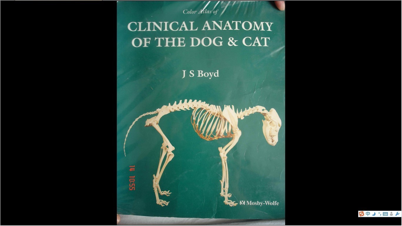 atlas of clinical gross anatomy 2nd edition pdf