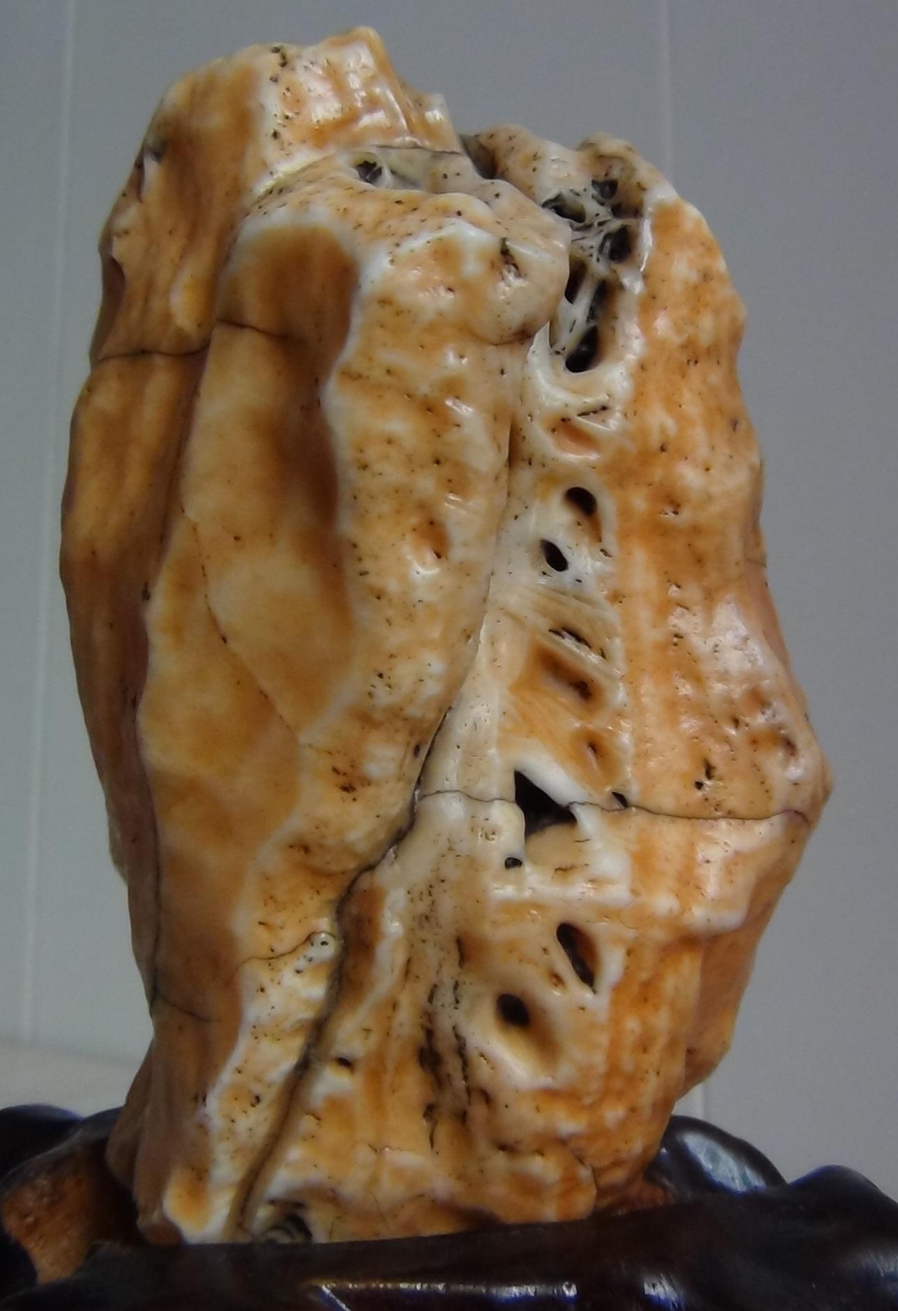 新疆沙漠漆奇石图片_戈壁石 沙漠漆 马牙石 老皮 玛瑙 风砺石 阿拉善奇石 精品沙漠漆