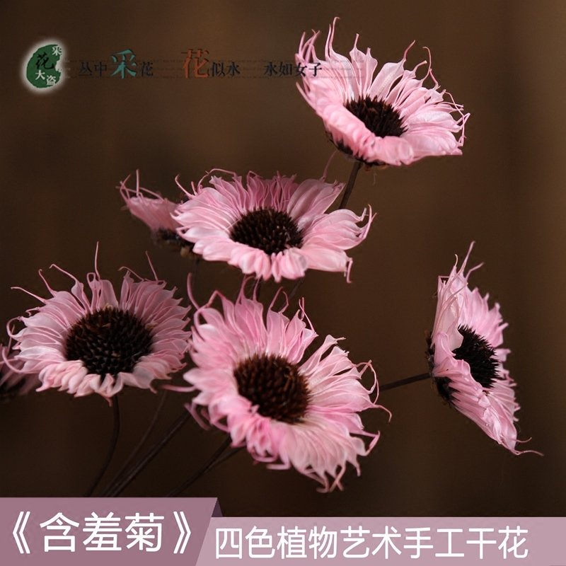 USD 6.65] Dried flower real flower simulation dried flower little ...