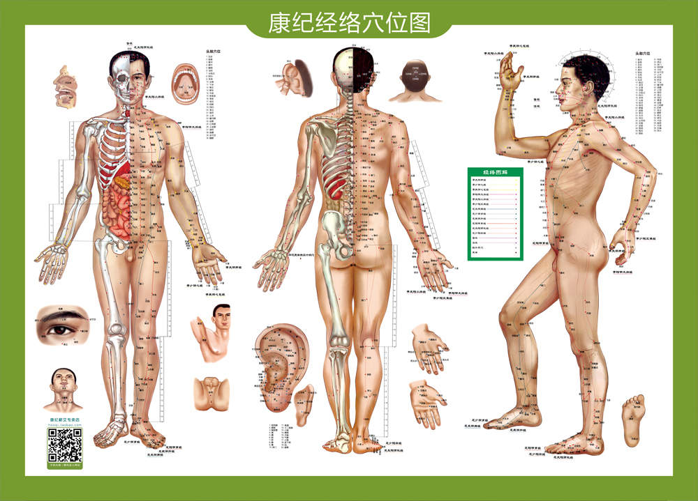 Usd 4 45 Kang Ji High Definition Acupuncture Points Map