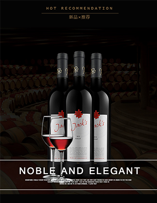 ST16 食品酒水 原瓶进口 干红 葡萄酒 双支红酒 醒酒器 酒杯