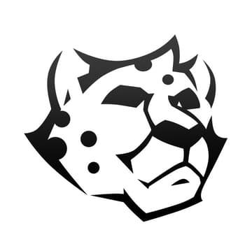 豹子的健身日记