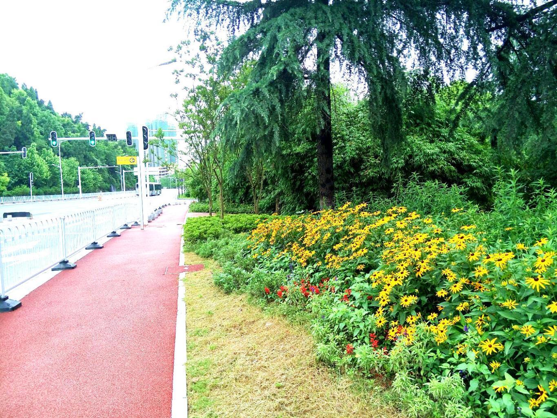 王家河公园