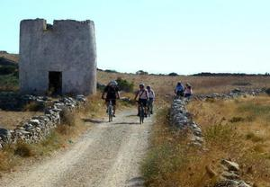 Awake Paros Watersports&Bike Tours
