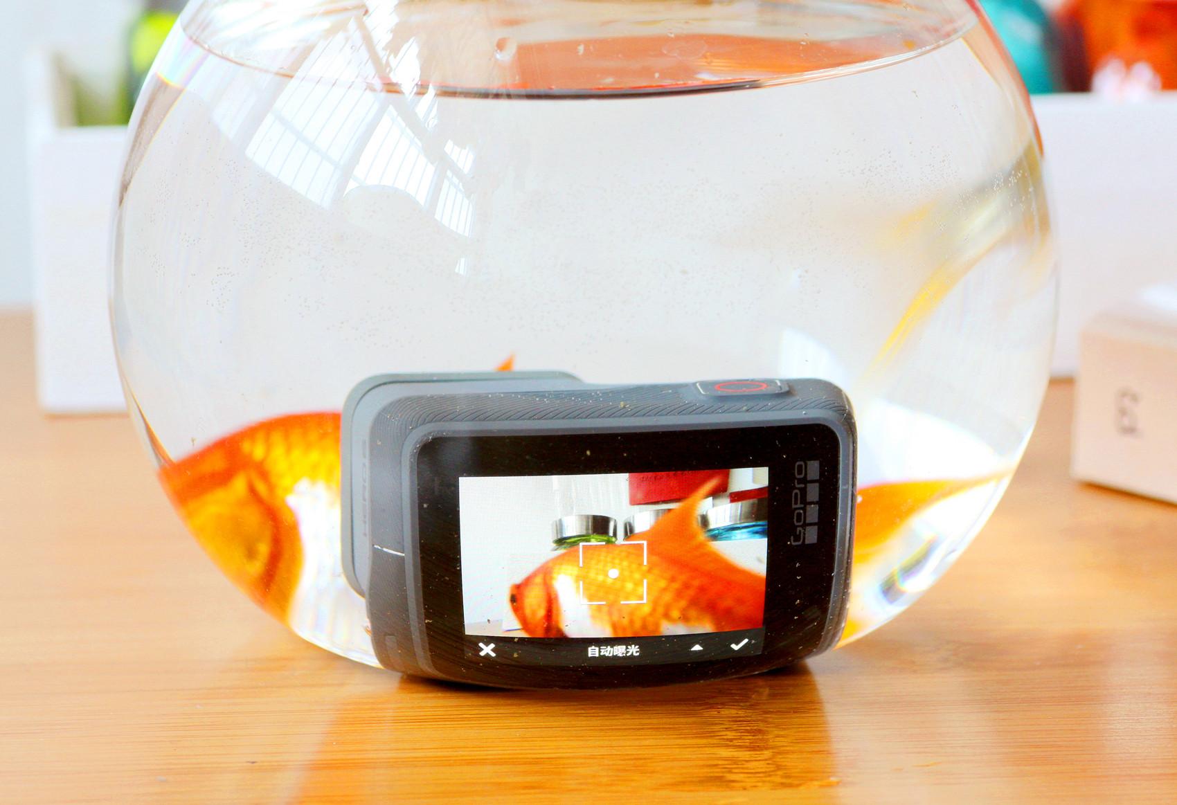 了解gopro hero5和6哪个好?GoPro HERO 6 BLACK数码运动相机怎么样评测分享!