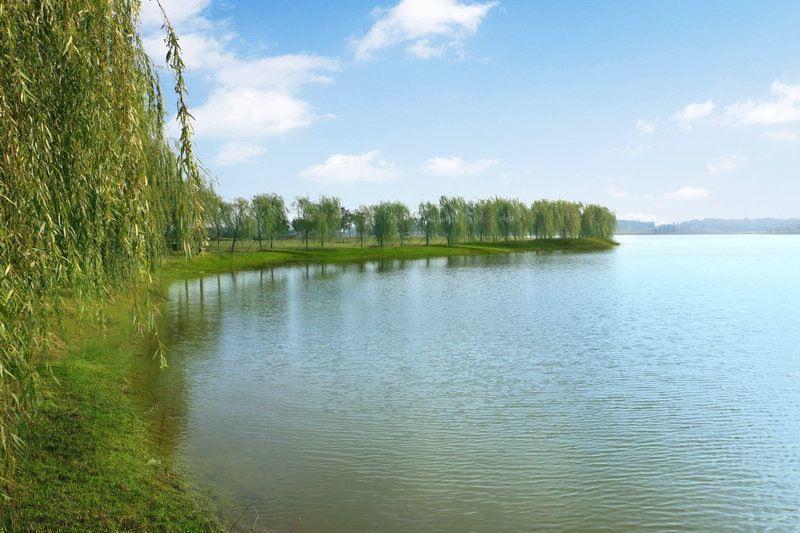 灌南县硕项湖湿地公园