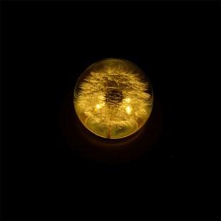 水晶球蒲公英天空之城音乐盒八音盒木质女生生日朋友礼物女友浪漫