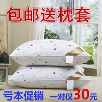睡枕头午睡大人大号75×45卧室少女芯平一对装便携枕头枕芯宾馆