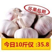 2018年农家自种大蒜新干蒜精选新晒大蒜头杞县大蒜10斤 干蒜10斤装