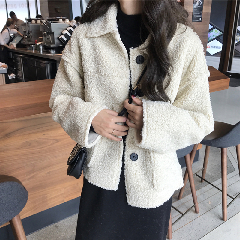 single row buckle fur coat autumn and winter women 2018 new wild loose thin warm