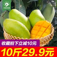 越南芒果进口水果