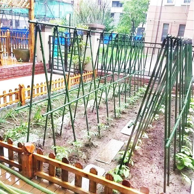 植物爬架 爬藤架 丝瓜架豆角架子黄瓜瓜架家用户外阳台花月季绿萝