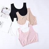 Ice silk seamless wrap chest tube One-piece small vest female sling student anti-lighting base short underwear thin